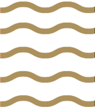 popeye-branding-colour-04